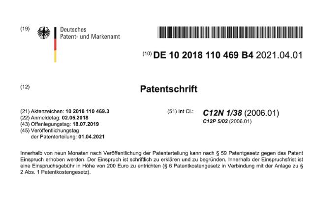 Die GeoHumat Plus® Patentschrift